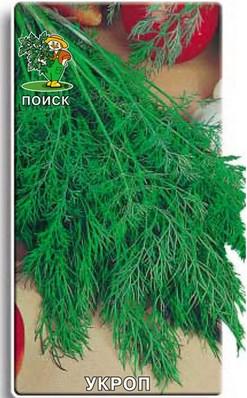 семена укропа Грибовского