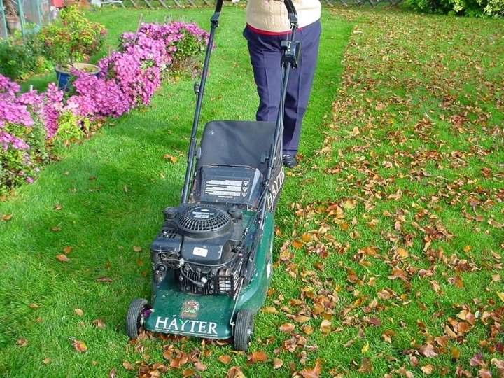 скашивание газона осенью
