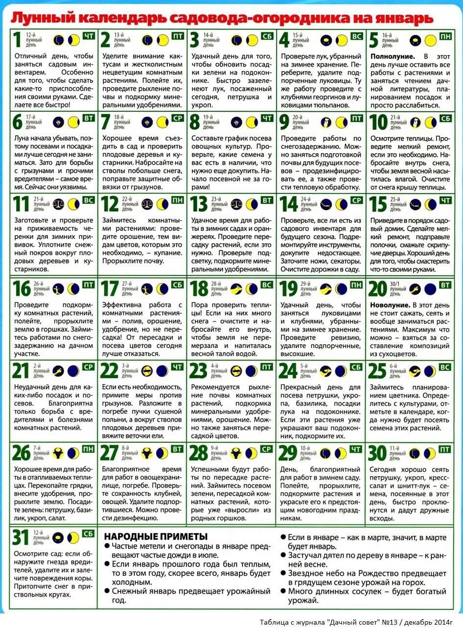 Календарь Для Садовода