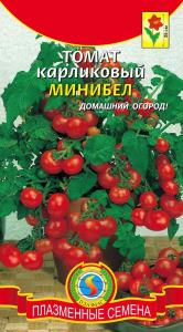 томат карликовый минибел