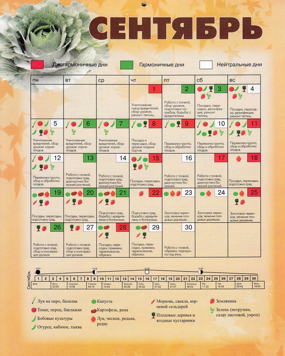 Календарь весь 2010 год