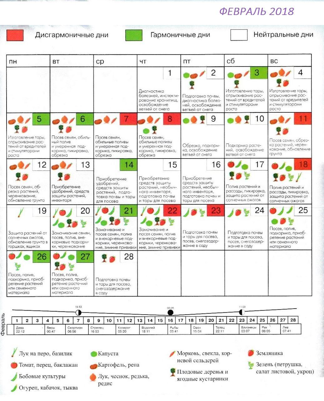 Лунный календарь для садоводов и огородников на январь 2017 года 99