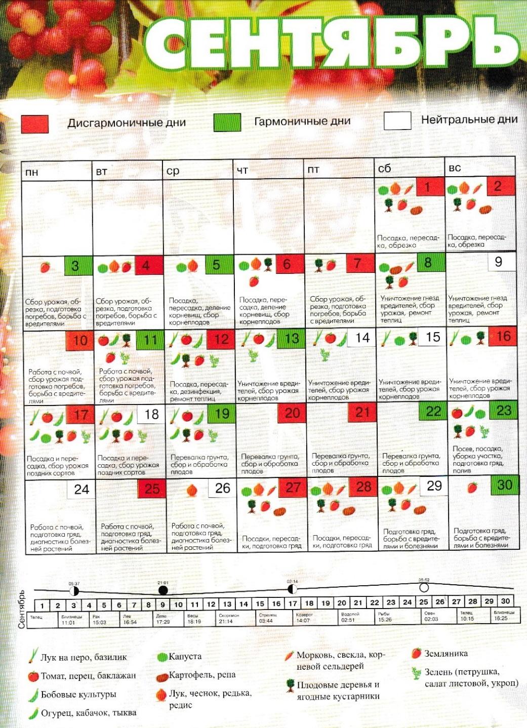 лунный календарь огородника сентябрь 2018