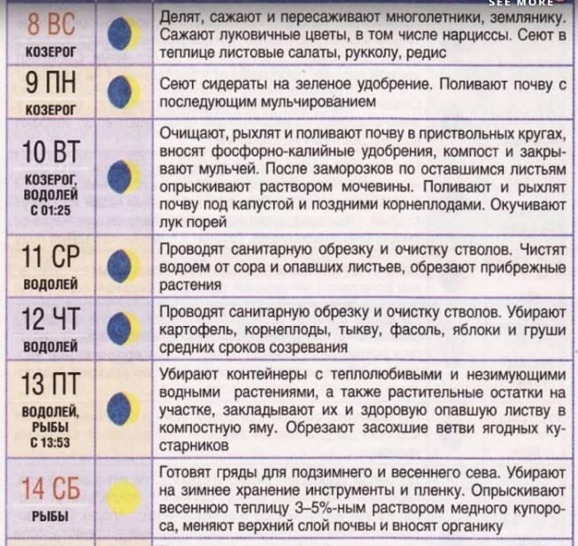 лунный календарь огородника на сентябрь 2019 года