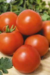 томат f1 Леопольд