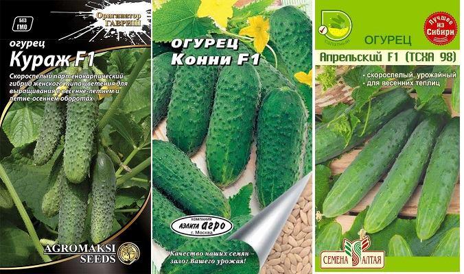 огурцы Конни, Кураж, Апрельский